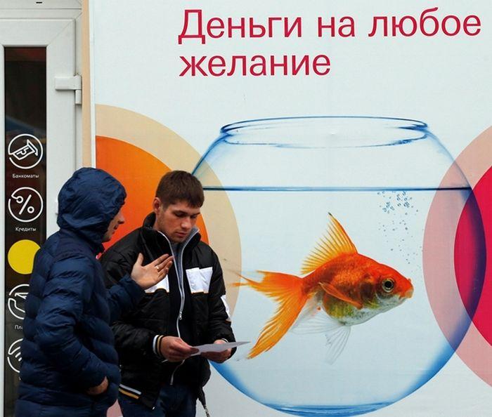 Банк россии исследовал финансовых посредников