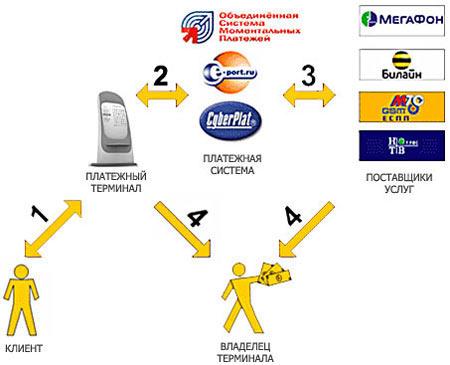 Бизнес план установки терминалов оплаты