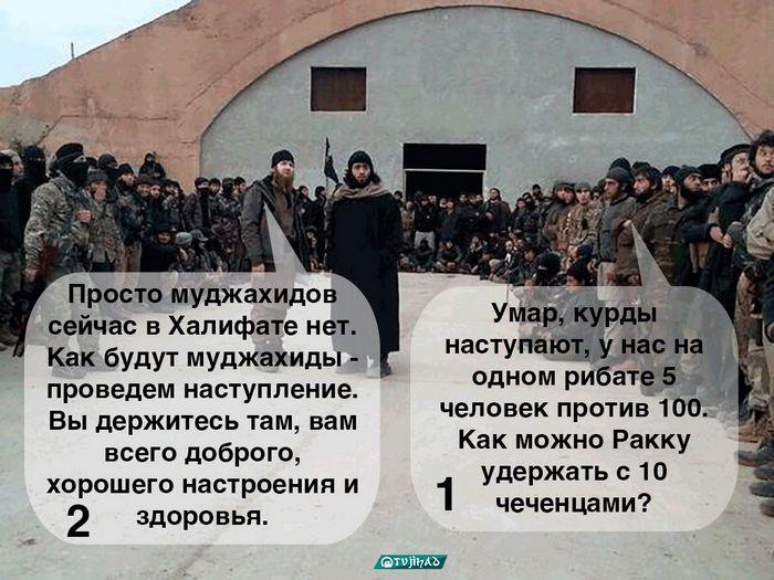 Елена орлова: «демпинговать, чтобы завоевать рынок, – это не наша модель»