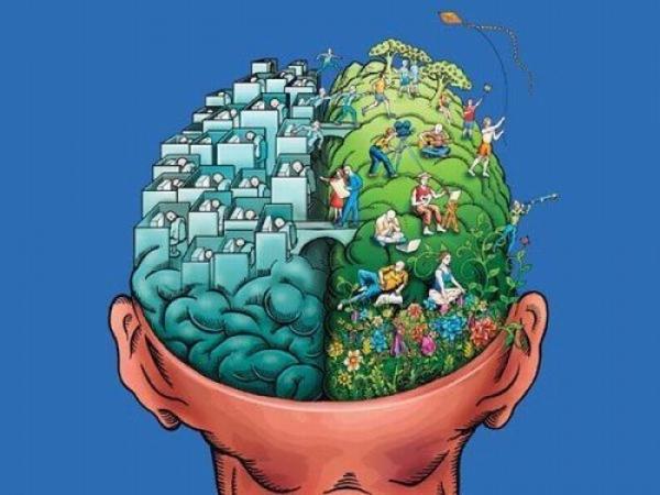 Как развить мозг на 20 процентов