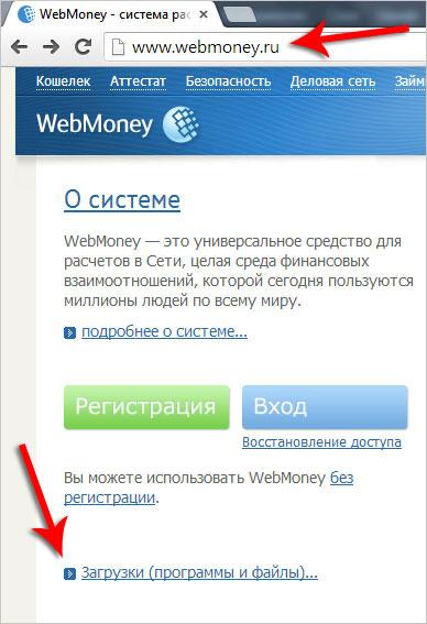 Оплата порно по webmoney