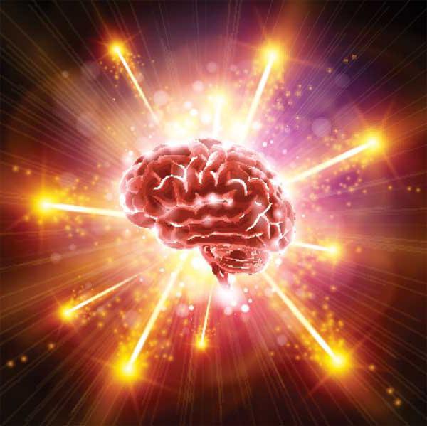 На сколько процентов работает мозг человека? узнайте, сколько процентов мозга использует человек