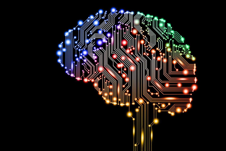 На сколько процентов работает мозг тест