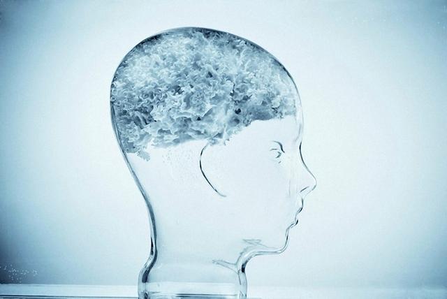 На сколько процентов работает наш мозг