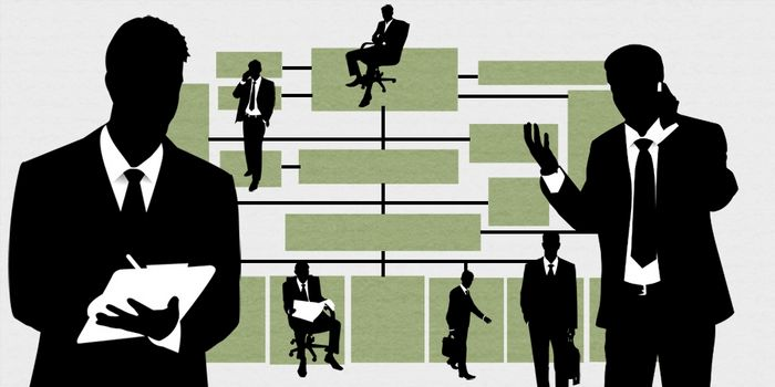 Пора ли apple менять структуру управления?
