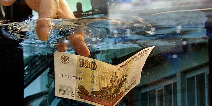 Свободному рублю стукнуло два года