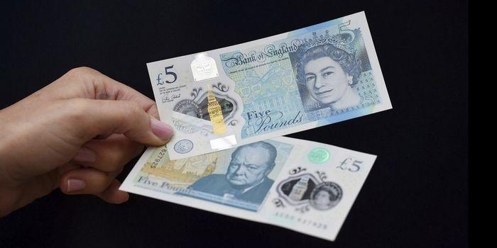 В великобритании запускают в обращение новые пластиковые деньги